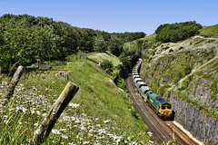 Daisy Routes (whosoever2) Tags: uk united kingdom gb great britain nikon d7100 train railway railroad june 2019 doveholes tunnel derbyshire freightliner class66 66616 6m03 cottam tunstead daisies peakdistrict highpeak buxton