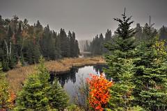 Before sunrise, Algonquin Provincial Park (klauslang99) Tags: klauslang nature naturalworld northamerica canada algonquin park ontario forest woods pond lake sunrise morning landscape fog mist
