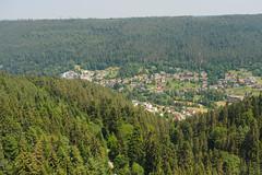 View from Suspension Bridge Bad Wildbad-E6271778 (tony.rummery) Tags: badwildbad blackforest em10 germany mft microfourthirds omd olympus viewpoint wildline badenwürttemberg