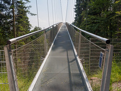 Suspension Bridge Bad Wildbad-E6271772 (tony.rummery) Tags: badwildbad blackforest bridge em10 germany mft microfourthirds omd olympus perspective wildline badenwürttemberg