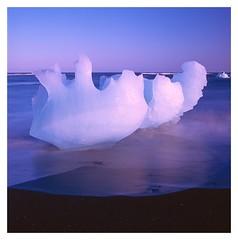 Diamond beach, Jökulsárlón, Iceland (2019) (phamnes) Tags: 120film ishootfilm iceberg colorfilm slidefilm mediumformatfilm jökulsarlon diamondbeach iceland epsonv600 velvia50 velvia fujichrome fujifilm 80mm zeissplanar planar zeisslens zeiss hasselblad501cm hasselblad