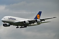 """Frankfurt am Main"" Lufthansa D-AIMA Airbus A380-841 cn/38 Lufthansa's first Airbus A380 @ EDDF / FRA 01-05-2018 (Nabil Molinari Photography) Tags: frankfurtammain lufthansa daima airbus a380841 cn38 lufthansas first a380 eddf fra 01052018"