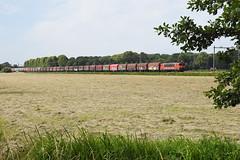 DBC 1615 at Vogelenzang, June 30, 2019 (cklx) Tags: staaltrein steeltrain leyduijn dbc dbcargo 1615 1600