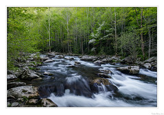 Mountain River Spring (John Cothron) Tags: americansouth cpl cothronphotography distagon2128ze distagont2821ze dixie eastsouthcentralstates georgiaphotographer greatsmokymountainnationalpark johncothron middlepronglittleriver seviercounty sevierville southernregion tennessee thesouth tremont us usa usaphotography unitedstatesofamerica volunteerstate zeissdistagont2821ze afternoonlight circularpolarizingfilter clearsky creek flowing forest freshwater landscape longexposure moss nature outdoor outside river rock scenic spring stream sunny vegetation water 257305d4180430coweb6302019 ©johncothron2018 mountainriverspring