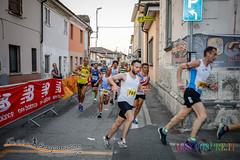 Camisano-1090