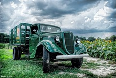 Before the storm....HSS!!! (Joe Hengel) Tags: beforethestorm wyomingde wyoming delaware de kent county oldtruck truck greentruck automobile auto sunflowers sunflower summer summertime storm stormclouds stormyday clouds cloudy hss happyslidersunday slidersunday sunday fiferorchards fiferfarm orchard farm