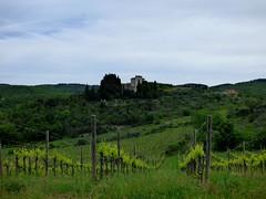Tuopina in der Toskana / Tuopina in Tuscany (ursula.valtiner) Tags: landschaft landscape gebäude building weingarten wineyard chianticlassico tuopina toskana toscana tuscany italien italy