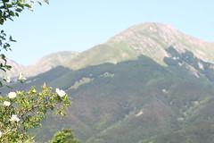 IMG_4066 (Cristian Marchi) Tags: cerreto appennino parco nazionale national park wikilovesearth photography photowalk nature outdoor natura montagna hike hiking trekking passeggiata casarola monte 443 helios levnoc 58 escursione