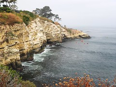 9783ex2 Pacific coastline @ La Jolla (jjjj56cp) Tags: coast coastline beach rocky rockybeach cliffs waves surf lajolla lajollacove ca california hillside kayak kayakers ocean pacificocean westcoast californiacoast p1000 coolpixp1000 nikoncoolpixp1000 jennypansing waterscape junegloom