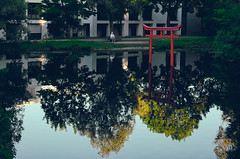 from the mundane to the sacred... (helmet13) Tags: leicaxvario people woman park pond waterreflection water torii silence peaceful evening summer aoi peaceaward world100f