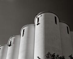 Grain silo (Geir Bakken) Tags: silo mamiya mamiyarb67 mediumformat analog analogue analogphotography film filmisnotdead filmphotography filmcamera 120film ilovefilm blackandwhite ilford ilfordfp4 fomadon lqn