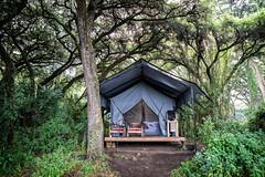Glamping (Markus Hill) Tags: africa travel camping camp nature canon tanzania safari ngorongoro crater arusha tansania 2019 glamping sanctuaryngorongorocratercamp