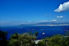2019-05-29 - Gibraltar (53) (aknad0) Tags: gibraltar krajobraz morze drzewa