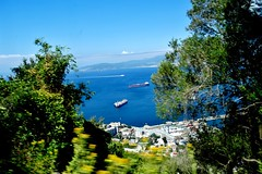 2019-05-29 - Gibraltar (54) (aknad0) Tags: gibraltar krajobraz morze drzewa