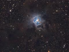 The Iris Nebula (Photonen-Sammler) Tags: iris nebula ngc 7023 astrophotography astronomy deep sky