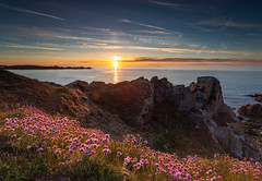 Sea Pinks (Ian Toms) Tags: sunset guernsey fortlemarchant pink flowers sky seascape clouds landscape rocks cloudporn foreground headland skyporn guernseystyle guernseylife