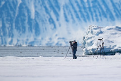 Watcher on the Ice (Paul B Jones) Tags: floeedge birder birdwatcher scope bylotisland baffinisland nunavut arctic canada nature ice mountains canoneos1dxmarkii ef600mmf4lisiiiusm ef14xiii