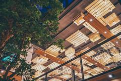 和平青鳥 (aelx911) Tags: a7m2 a7ii a7 sony bookstore taiwan taipei landscape night building 台灣 台北 和平青鳥 書局