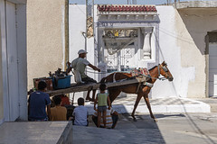 _MG_0508 (Artodox) Tags: тунис tunisia tunesien sousse сусс