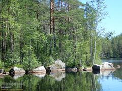 Lake Kivikesku (PeepeT) Tags: kivikesku lake järvi nokia nature naturereserve luonto luonnonsuojelualue luontokuvaus naturephotography suomenluonto finnishnature summer kesä
