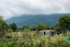 Niebla en Jaizkibel (eitb.eus) Tags: eitbcom 16599 g1 tiemponaturaleza tiempon2019 monte gipuzkoa hondarribia josemariavega