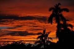 Ciel en feu (jeangrgoire_marin) Tags: sky sunset fire orange clouds silhouettes philippines tropical weather