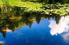 Lago di Cei (Rovereto - Italy) (giannizigante) Tags: lagodicei rovereto acqua foresta lago montagna