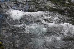 Turbulence on the river (rozoneill) Tags: mckenzie river national recreation trail bridge deer scott boulder willamette forest belknap springs oregon hiking creek