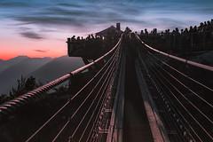 Suspended (charhedman) Tags: 201952weekchallenge dusk seatoskygondola mthabrich suspensionbridge sunset light wires silhouettes concert people
