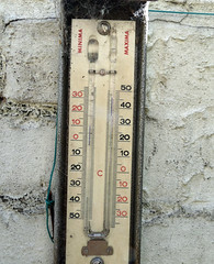 June 29th, 2019 Hot! (karenblakeman) Tags: cavershamgarden caversham uk thermometer temperature june 2019 2019pad reading berkshire