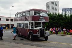 3 MRD146 (PD3.) Tags: aec regent reading berkshire berks bus buses england uk transport fun day 3 mrd146 mrd 146