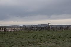 """76"" Ranch Corrals - DSC_3945a (Markus Derrer) Tags: grasslandsnationalpark grasslands markusderrer saskatchewan may spring prairie corral abandoned ranch"