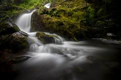 Green and Water (Thos A.) Tags: waterfall water stream river green grass moss longexposure nd nature natur naturephotography naturaleza cascade eau vert eos eos80d canon tokina forest forêt morvan bourgogne burgundy