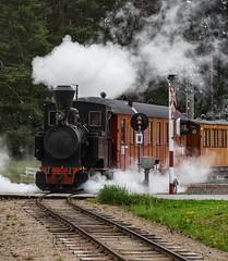 Instagram 2019-06-30 (Michael Erhardsson) Tags: hamar norskjernbanemuseum 2019 urskog