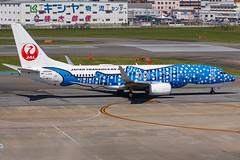 "JAPAN TRANSOCEAN AIR B737-800(WL) JA05RK ""Jinbei Jet"" 001 (A.S. Kevin N.V.M.M. Chung) Tags: aviation aircraft aeroplane airport airlines apron plane spotting fukuoka fuk boeing b737 b737800wl speciallivery jta"