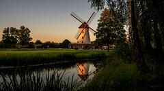 Wenn der Wind der Veränderung weht, bauen die einen Mauern und die anderen Windmühlen. (gabrieleskwar) Tags: outdoor draussen windmühle architektur mauern wiese bäume baum baumstamm blätter bunt blumen wasser spiegelung spaziergang himmel gras gräser nikonz6 krefeld