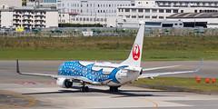 "JAPAN TRANSOCEAN AIR B737-800(WL) JA05RK ""Jinbei Jet"" 002 (A.S. Kevin N.V.M.M. Chung) Tags: aviation aircraft aeroplane airport airlines apron plane spotting fukuoka fuk boeing b737 b737800wl speciallivery jta"