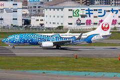 "JAPAN TRANSOCEAN AIR B737-800(WL) JA05RK ""Jinbei Jet"" 0031 (A.S. Kevin N.V.M.M. Chung) Tags: aviation aircraft aeroplane airport airlines apron plane spotting fukuoka fuk boeing b737 b737800wl speciallivery jta runway takeoff"
