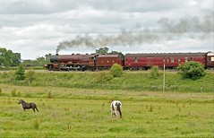 pony express (midcheshireman) Tags: steam train locomotive mainline 6201 princesselizabeth cheshire rollexexpress