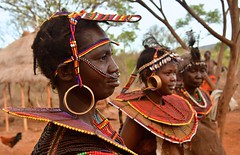 Kenya- Pokot people (venturidonatella) Tags: kenya africa northernkenya pokot minoranza minorities tribe tribù people persone gentes gente donne women portrait portraits ritratto ritratti colori colors nikon nikond500 d500 villaggio village pokotvillage