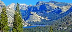 Tenaya Lake, Yosemite National Park 2018 (inkknife_2000 (10.5 million + views)) Tags: granitedomes easternsierranevadas yosemitenationalpark california usa landscapes mountains dgrahamphoto forests trees tenayalake granite granitemountains lakes tiogaroad boulders waterreflections clearwater alpinelake