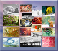 and another months slips by .... (Elisafox22) Tags: elisafox22 june 2019 collage snapshot images summary thumbnails border eggcup leaves flowers crystal crystalball infrared leithhall monochrome landscape sunshine trees carwash abstract macro glasses seashore bench fyvie sky clouds fences oudoor indoor stilllife blackandwhite postprocessing rust firegrate music sheetmusic spectacles slinky peony pink red aberdeenshire scotland elisaliddell©2019