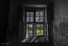 Outside......is it summer..... (lortopalt) Tags: abandoned övergivet mental hospital mentalsjukhus lortopalt stefan nikon d850