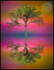 Magic World ... (Julie Greg) Tags: tree art abstract colours canon planet