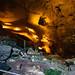Guano! Carlsbad Caverns National Park