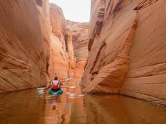 2019-06-30 07.50.29 (Lake Powell Adventure Company) Tags: antelopecanyon arizona arizonahiking antelopecanyonkayak glencanyon glencanyonnationalrecreationarea guidedtour lakepowell lakepowellkayak lake kayaking kayakingtour kayakinglakepowell kayaklakepowell paddling pageaz