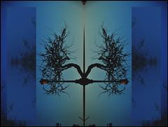 009605 (onesecbeforethedub) Tags: vilem flusser technical images onesecbeforetheend onesecbeforethedub onesecaftertheend photoshop multiple exposure collage edinburgh branch branches trees contemporaryart streamofconsciousness anthropocene doubleexposure double tree