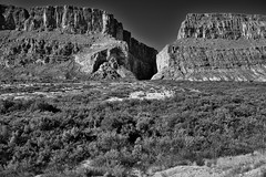 Santa Elena Canyon Overlook (Black & White, Big Bend National Park)