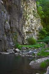 Under the Bridge (phthaloblu) Tags: virginia southern valley shenandoah usa park state bridge natural water trees rock
