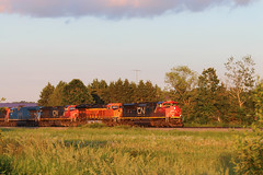What Memories Are Made Of (view2share) Tags: cn8871 sd70m2 l519 519 cn519 cnl519 barronsub canadiannational wisconsin wi summer evening westbound westernwisconsin emd electromotivedivision engine afternoon deansauvola sand sandmining fracsand june282019 june2019 june 2019 ruskcounty railroading railroads railway rail rr rails railroaders rring railroad roadtrip track trains transportation tracks train transport trackage trees travel freight freighttrain freightcar freightcars
